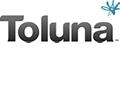 Online Nebenverdienst mit toluna